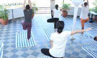 yoga-1-502x502